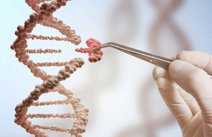 Gene splicing producing rDNA.
