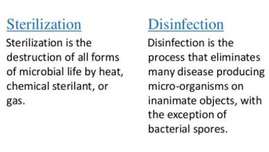 Difference Between Disinfection And Sterilization