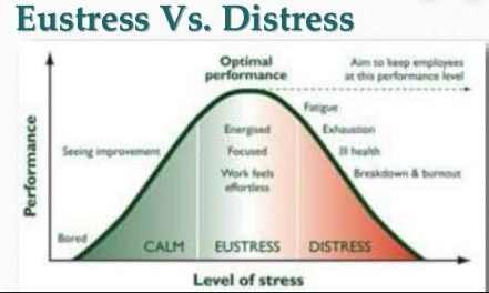 Difference Between Distress AND Eustress