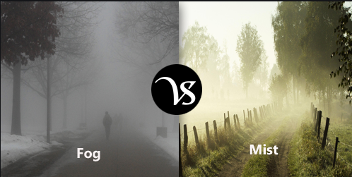 Difference Between Fog and Mist