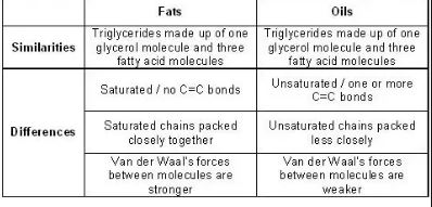 Difference Between Lipids And Fats