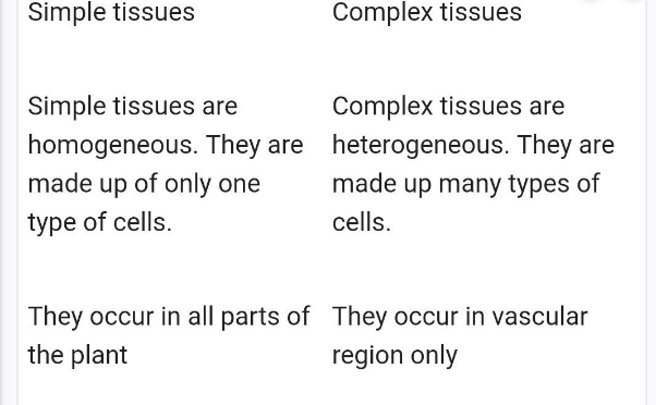 Difference Between Simple And Complex Tissue