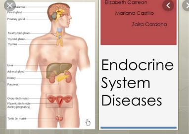 Diseases of Endocrine System