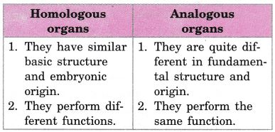 ifference Between Homologous And Analogous Structures