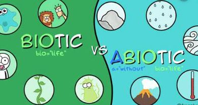 the biotic and abiotic factors