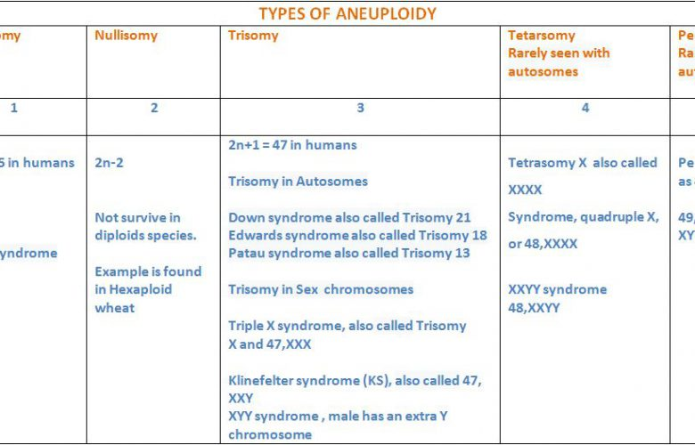 TYPES OF ANEUPLOIDS